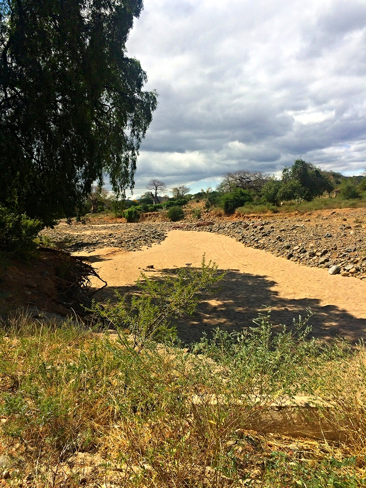 Many gullies and rivers created during the intense rain events in November and December remain dry in the Lowveld for the majority of the year.