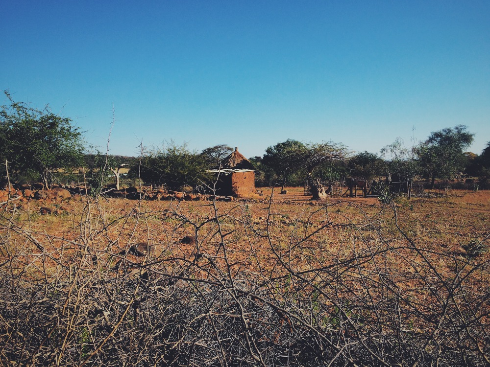 Chaseyama, a village in the Lowveld of Chimanimani District is one of many areas showing signs of intensifying desertification.
