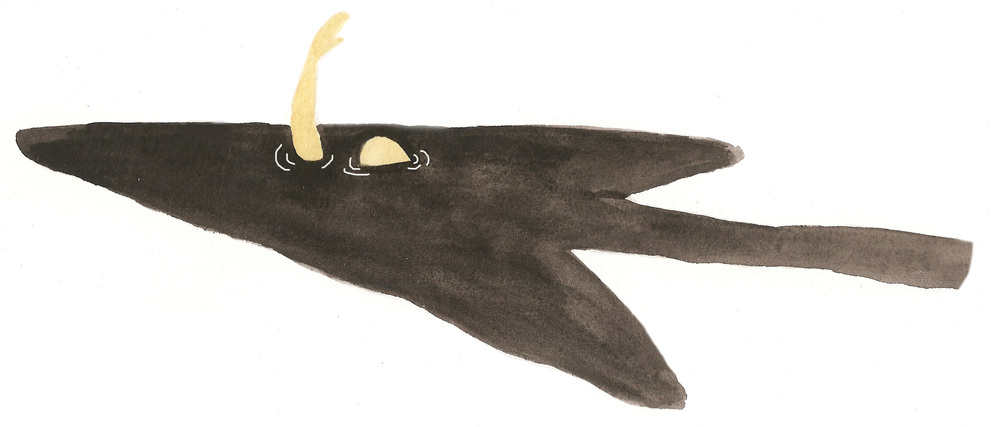 Illustrations by Lena Moses-Schmitt