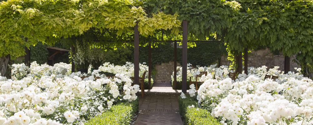 15. Rose Garden and Pergola.jpg