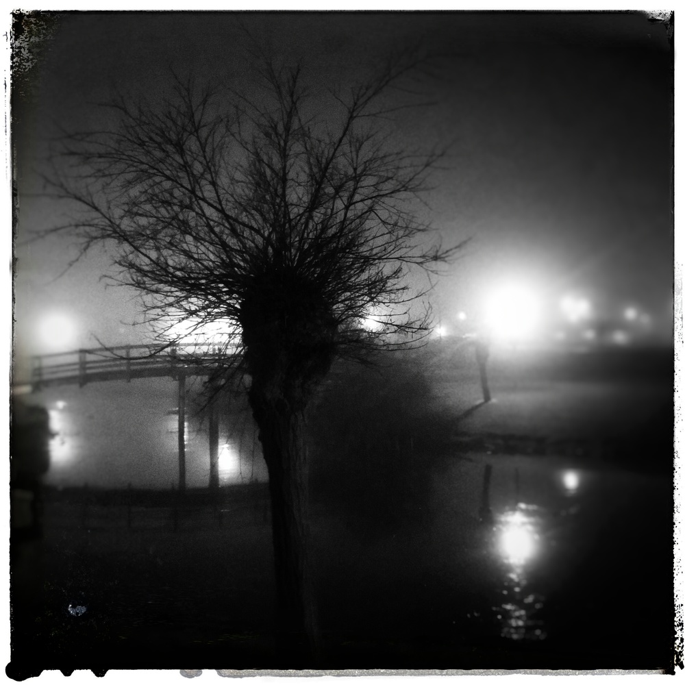 April 29 - Day 120; Foggy night