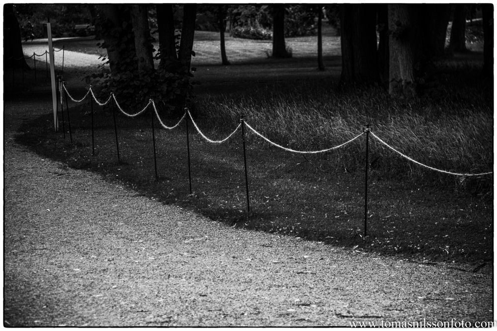 IMG_8392-Redigera.jpg