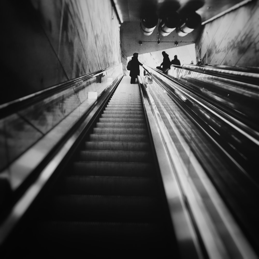Day 12: January 12 - Going Up