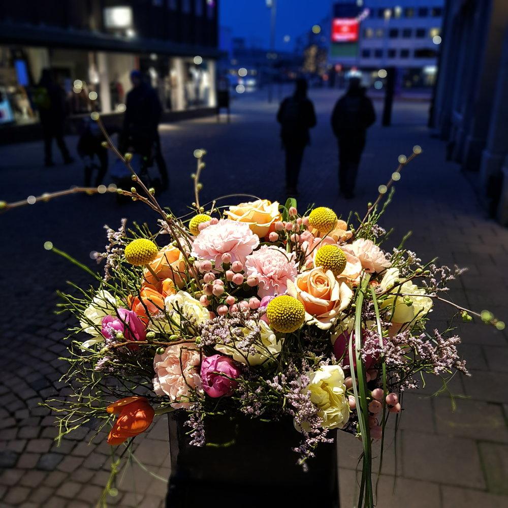 Day 41 - February 10: Night Flowers