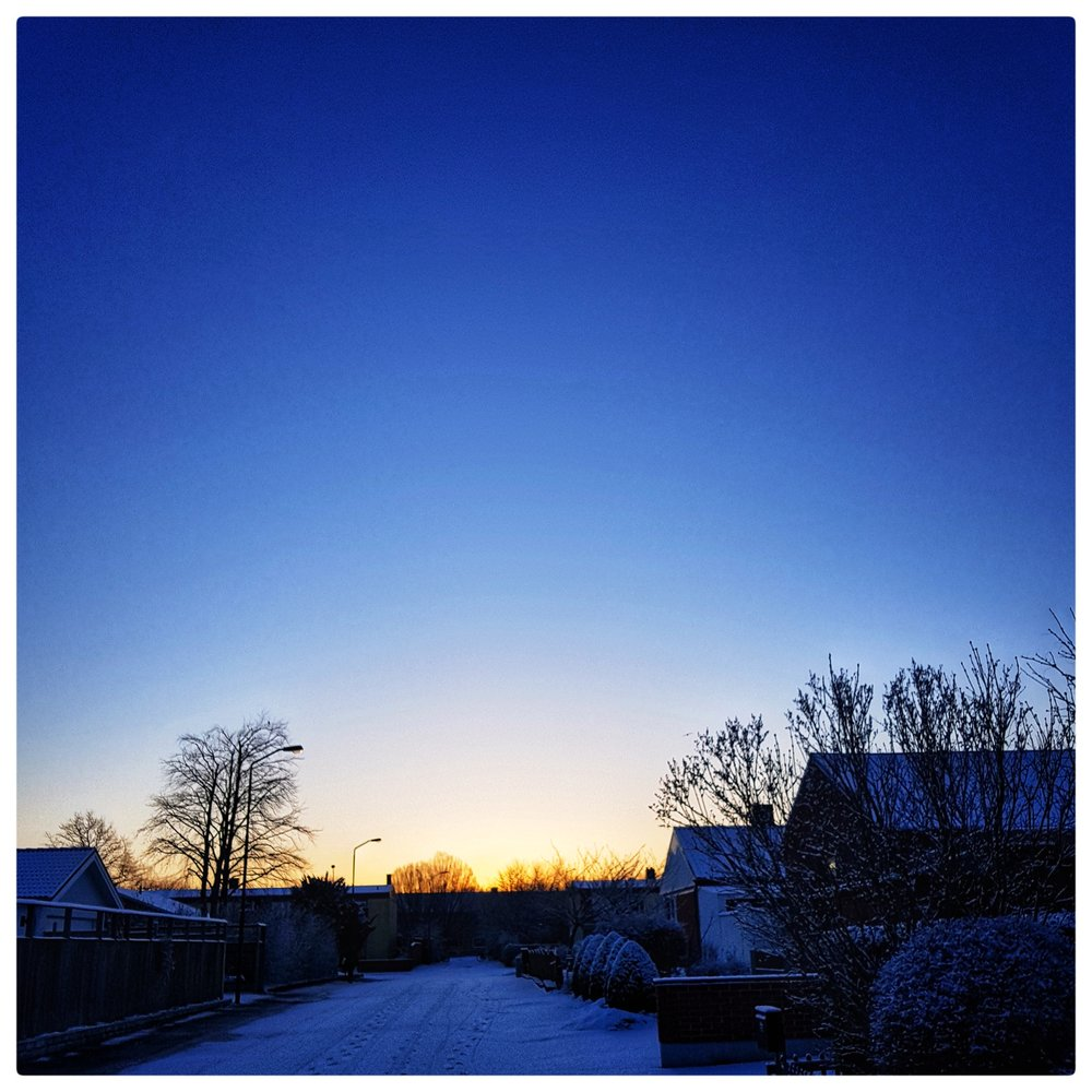 Day 79 - March 20: First Light