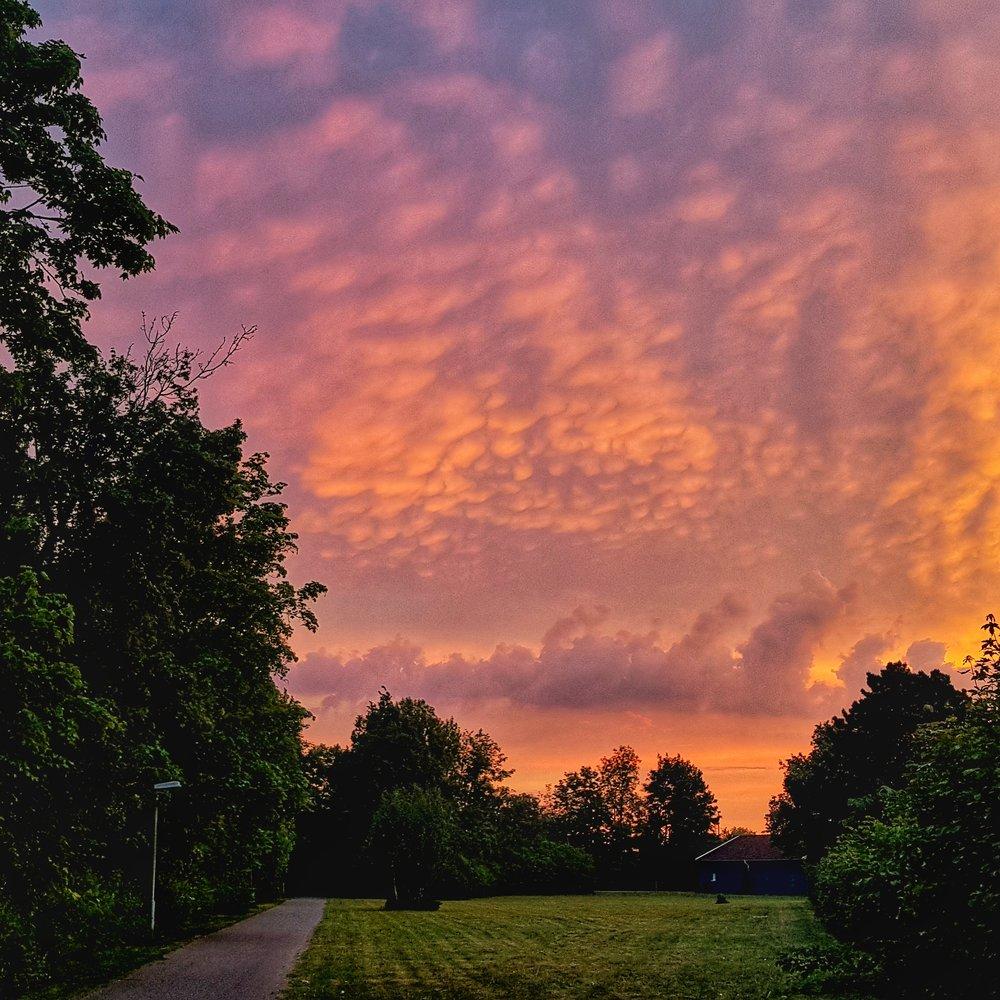 Day 150 - May 30: Technicolor Dawn