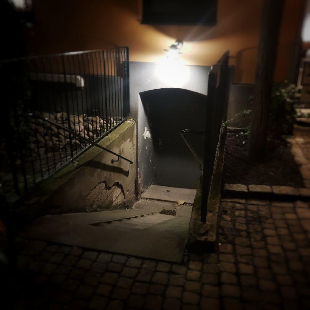 Day 346 - December 12: Mystery Cellar