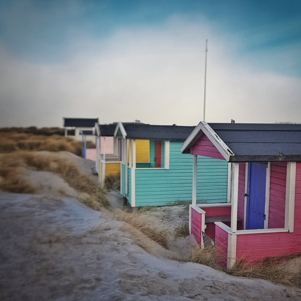 Day 19 - January 19: Beach Huts