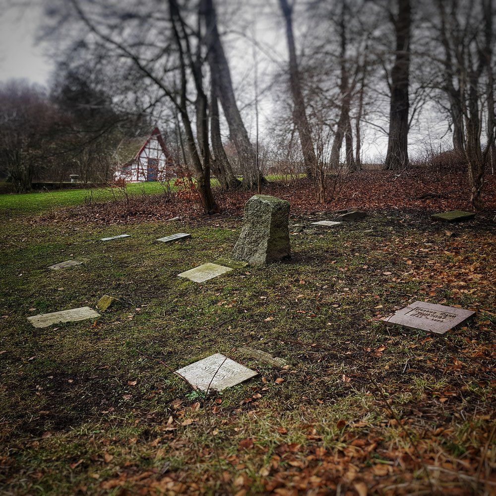 Day 30 - January 30: Pet Cemetery