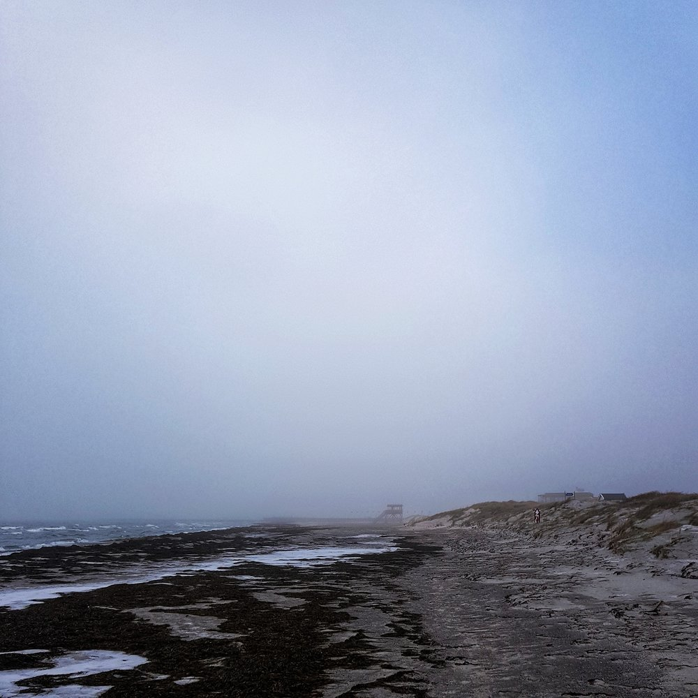 Day 37 - February 6: Beach Scene
