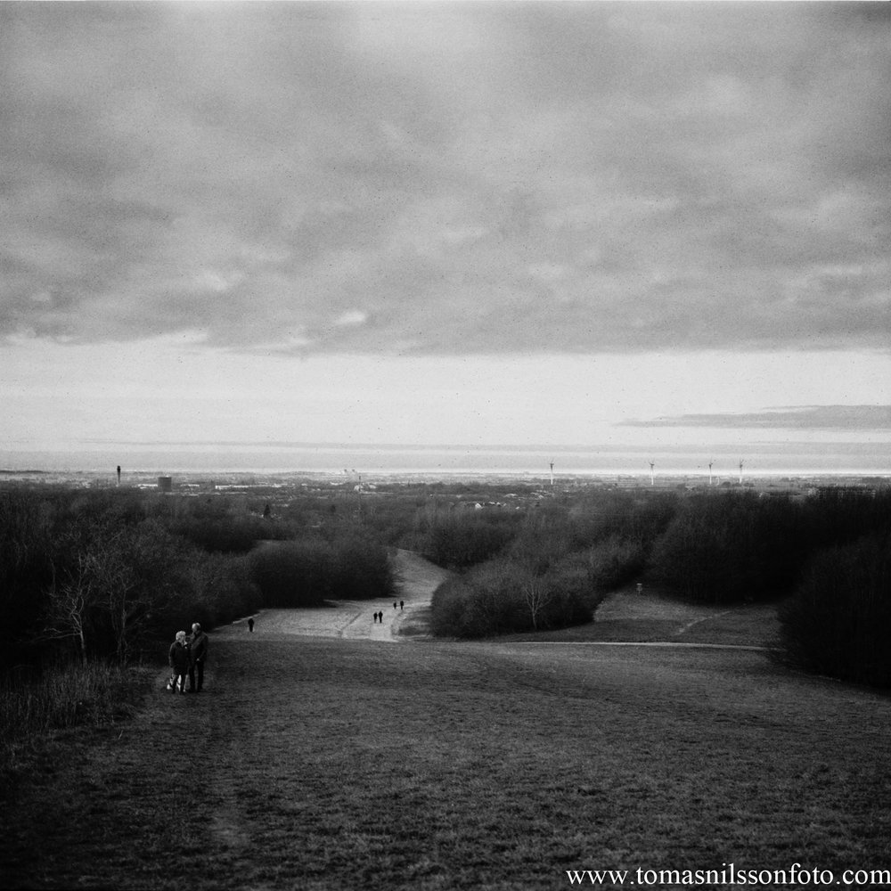 Day 73 - March 14: View from a hill