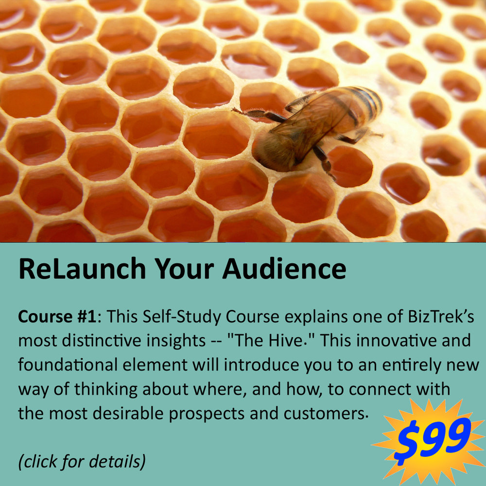 Marketing-Audience-Hive-Niche-Course.jpg