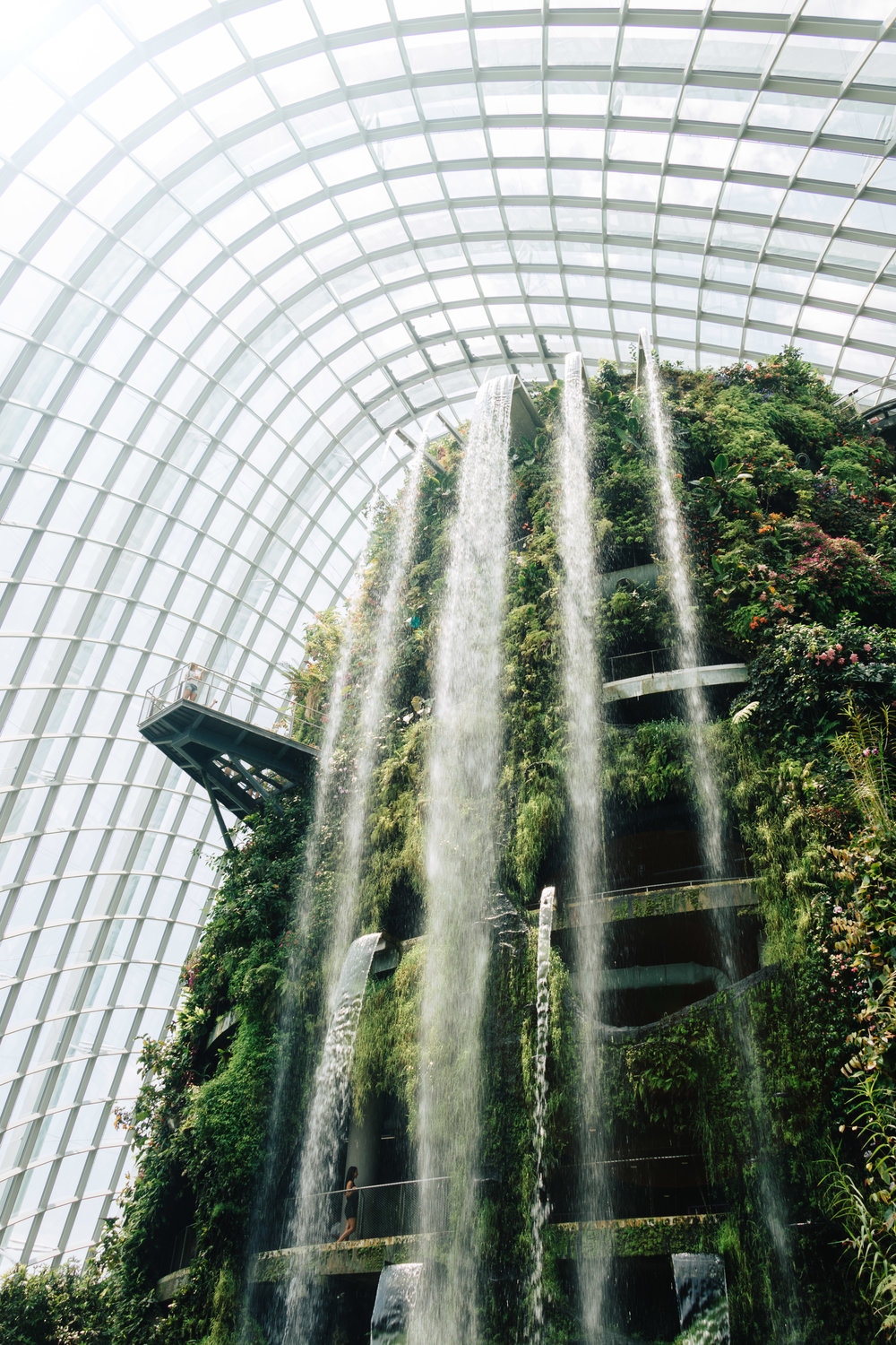 Gardens by the Bay-1.jpg