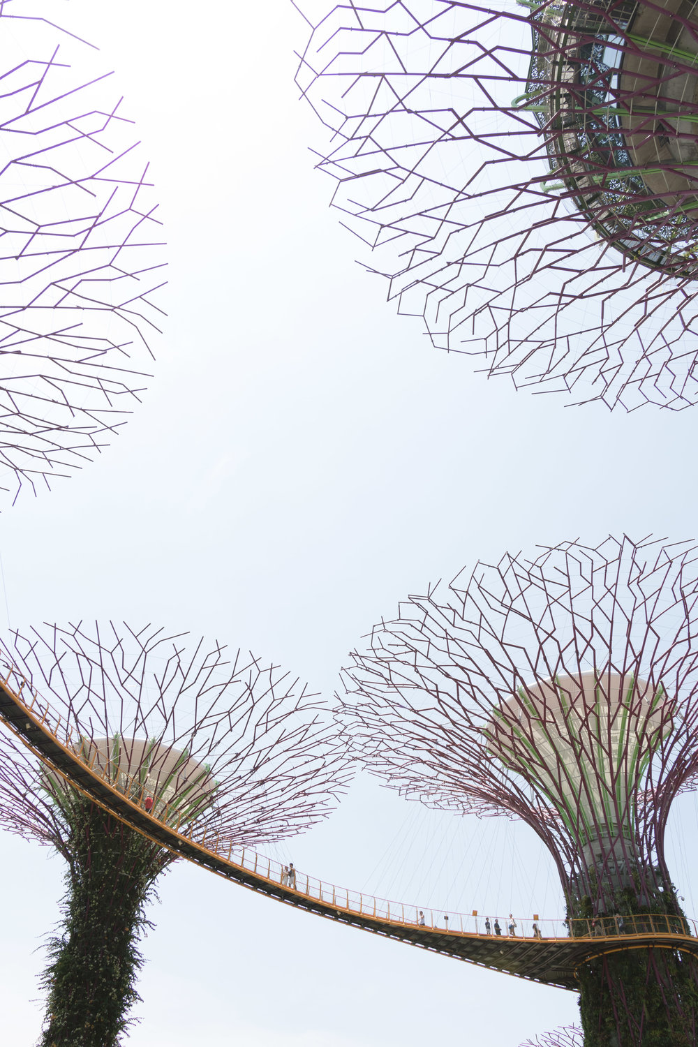 Gardens by the Bay-18.jpg
