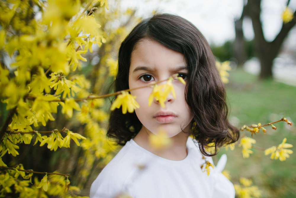 Forsythia Portrait ✨
