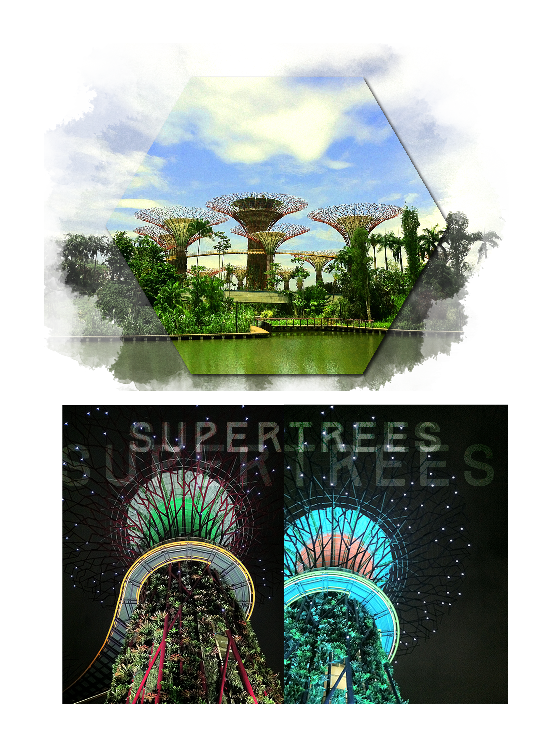 supertrees3