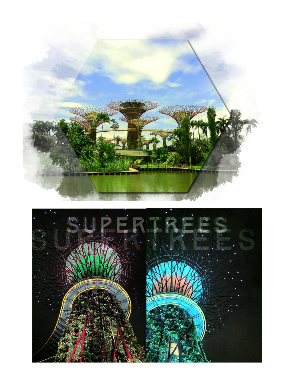 supertrees3.png