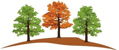 AltheaTrees