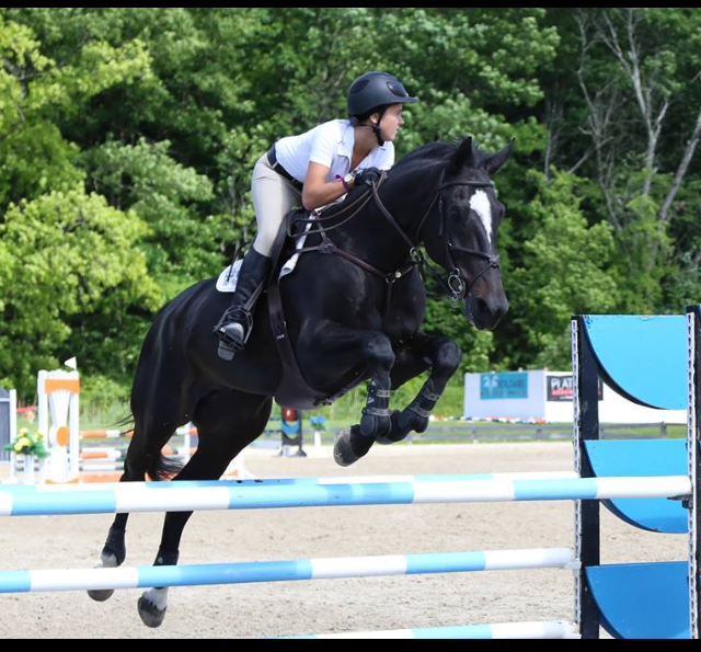 Singularity - Winning Jr/Amateur Jumper