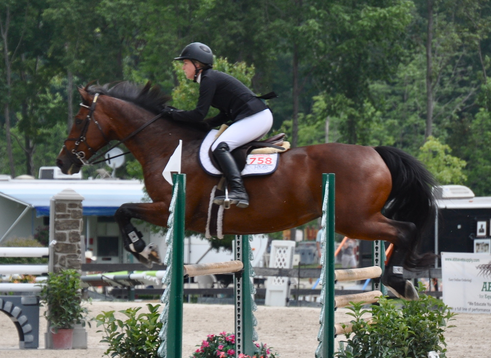 Cassia Catalina - Champion Jr/Am & Child Adult Jumper