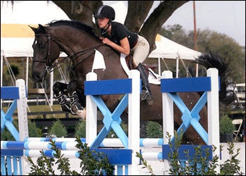 Splendid VDL - Jr/Am jumper champion + Equitation