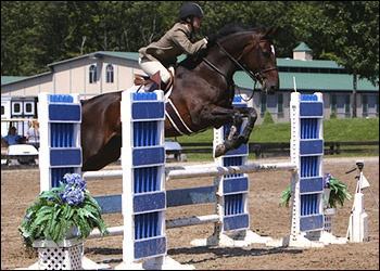 Chanel - winner 1.35m through hunters