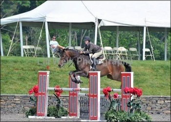 Zone 4 equitation champion