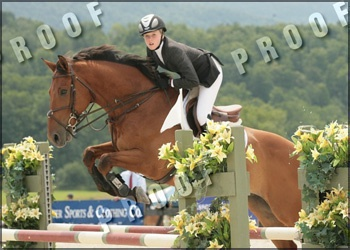 Beverly Hills - Champion Jr Jumper