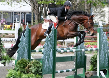 DonnerVogel - amateur jumper and YJC winner