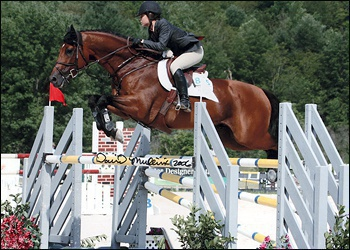 Denmark II - Jr Jumper champion