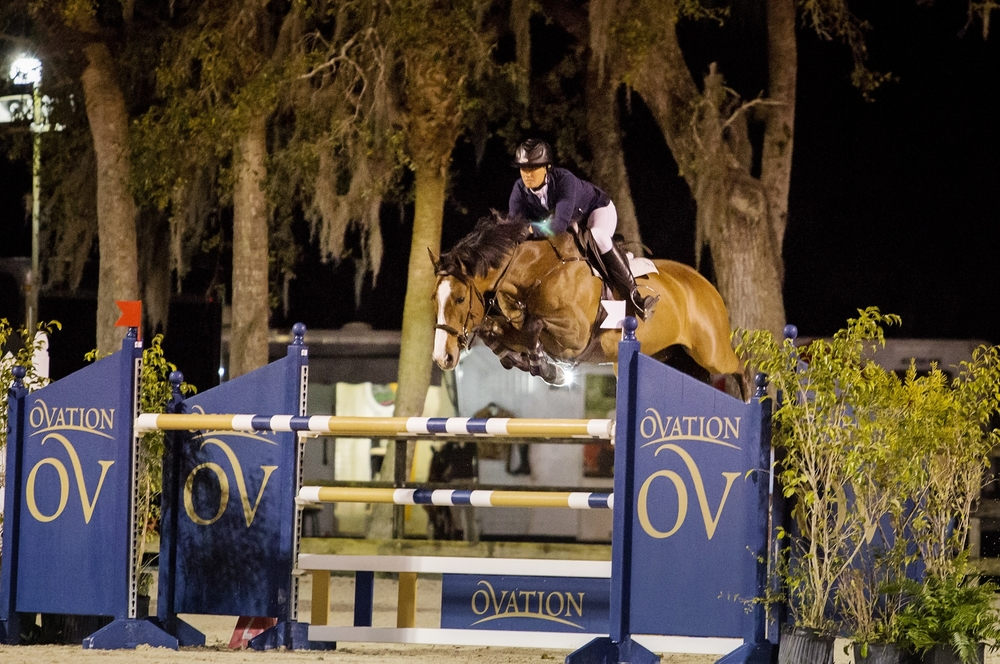 VDL Coverboy: 2007 KWPN gelding by Veron out of a Corland mare.  Currently jumping Grand Prix.  Champion first time doing 1.40m.  Winner 5, 6, 7 year old classes as well as junior/amateur jumpers, ribbon winner multiple Grand Prix.   Has also done equitation.