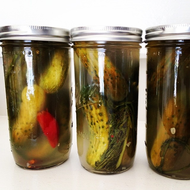 Viola! fermented dill pickled! Dissolve 1/2 cup salt into 1 gallon of cold water. Pour over clean cucumbers. Add garlic, chili, dill, mustard seeds, other spices. Sit at room temp covered and in dark cool space for 6 days until tart. Refrigerate. #pickleprojects #pickles #recipe #fermentation #cucumbers #food