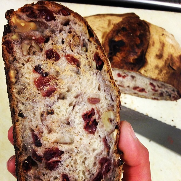 I'm getting way too good at this wild yeast bread making project 🙌😍 Cranberry walnut #wildyeast #bread #food #foodporn #soupmama (at Soup Mama Mel's Kitchen)
