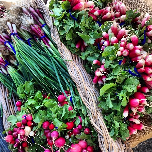 Colorful radishes and spring onions at the ferry building farmers market in SF. (at Ferry Plaza Farmers Market)