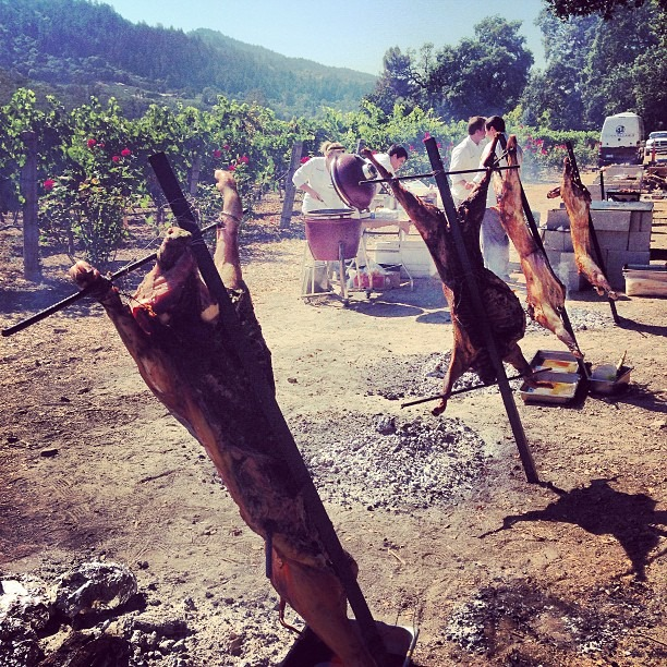 Cochon Heritage Fire 2013: it was a beautiful day to support sustainable farming of heritage-breed pigs 🔥🐷 #meat #fire  (at St. Helena)