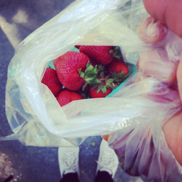 Best part about walking home from a farmers market 😋🍓👌#scoobiesnacks #toesandthings