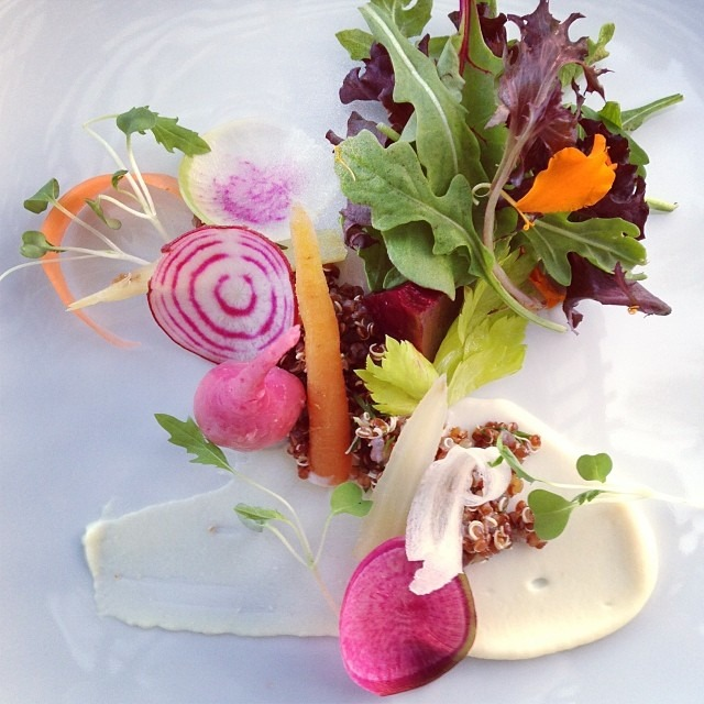 Made Mom a veggie garden: chioggia beets, watermelon radish, carrot, mizuna, celery root purée, red quinoa, marcona almond snow #garden #foodporn #soupmama #food #farmfresh #vegetables #farmersmarket #seasonal #fall
