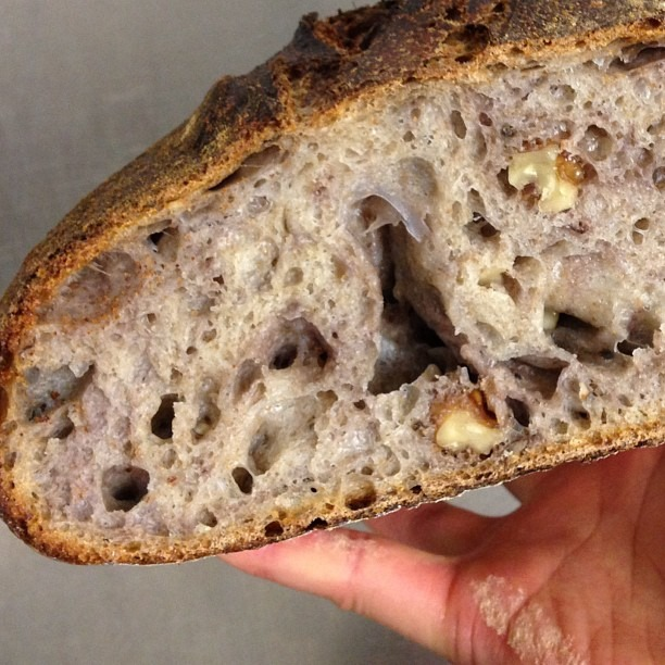Perfect Crumb: Black Pepper Walnut #wildyeast #bread #sourdough #soupmama
