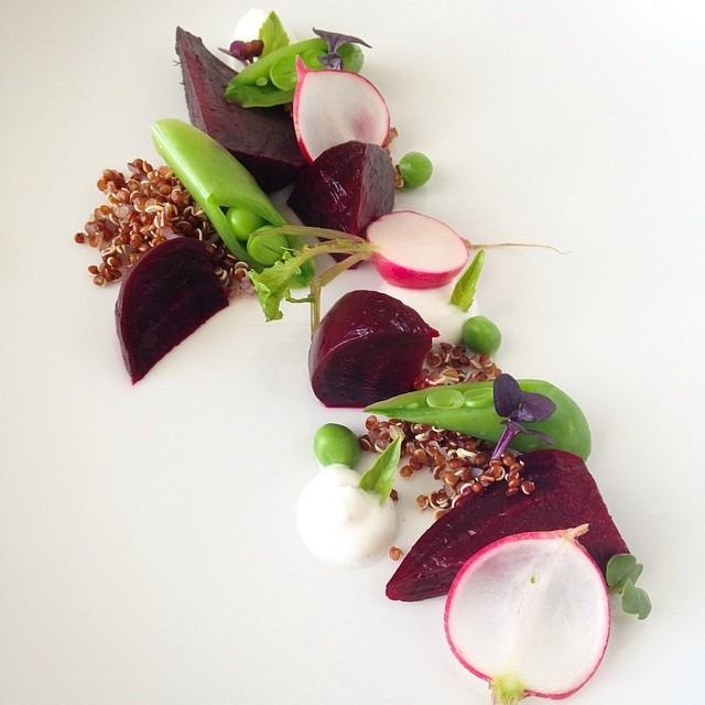 Beet, radish, sugar peas, yogurt, basil, red quinoa #food #foodgasm #foodporn #theartofplating #messingaround