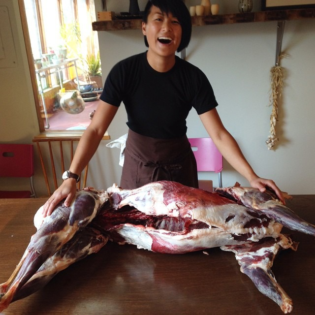 Hunter Brittany came home with this beautiful deer #venision #tuesdaymorningadventures #butchery #chefsoninstagram #topchefboston #tc12  (at dining room table)