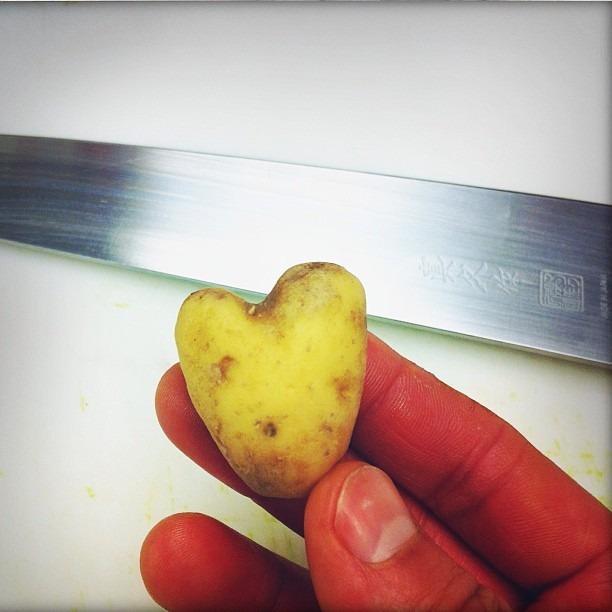 Happy valentines day #mypotatoheart #vday