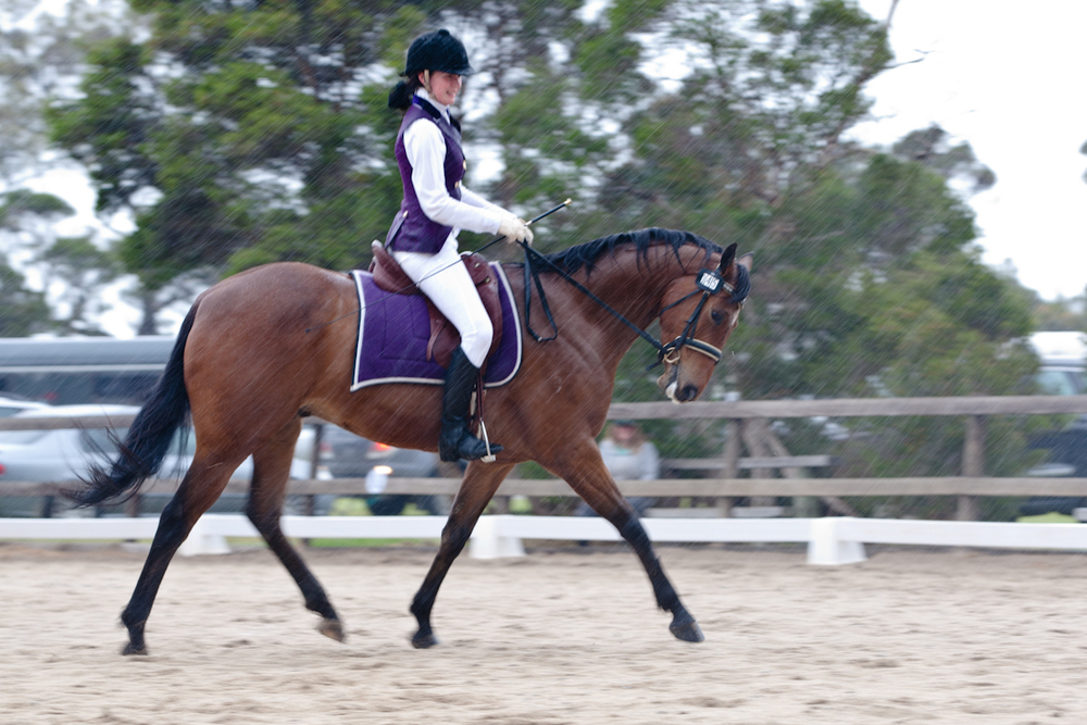 Dressage Trials