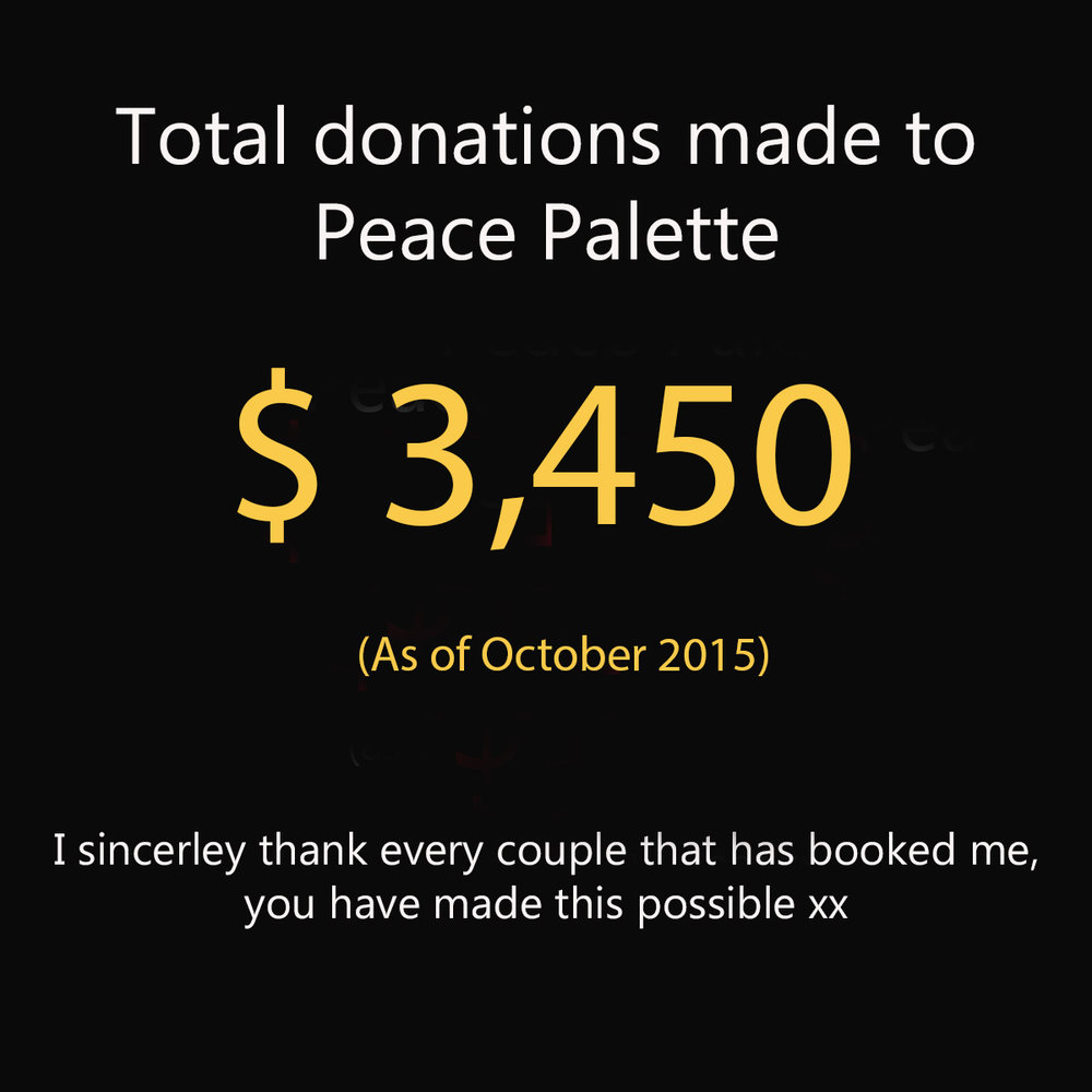 PP donation figure 2016.jpg