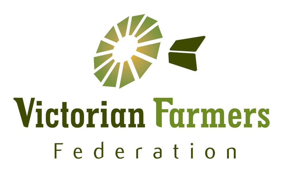 VFF Logo (2).jpg