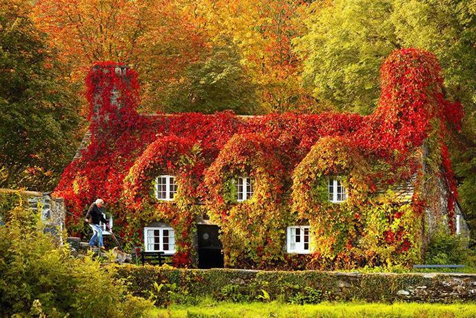 Tu Hwnt I'r Bont, North Wales