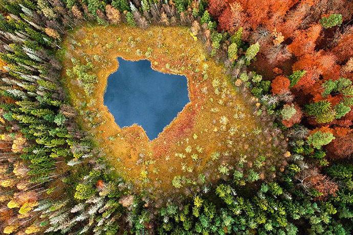 Forest Lake from above, Poland