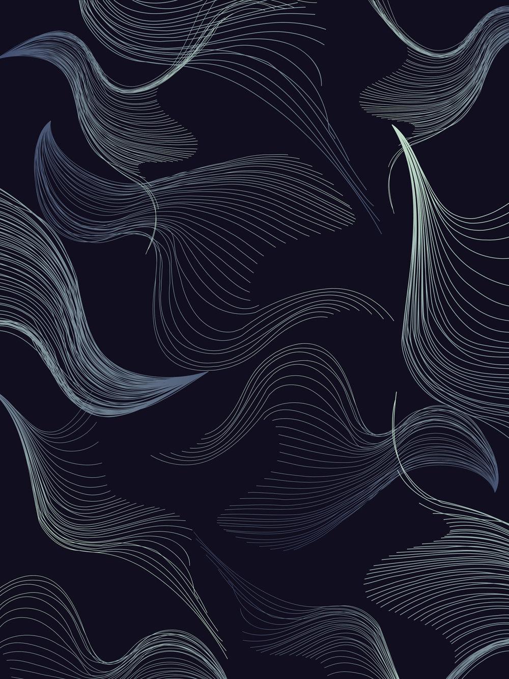 CO_11.jpg