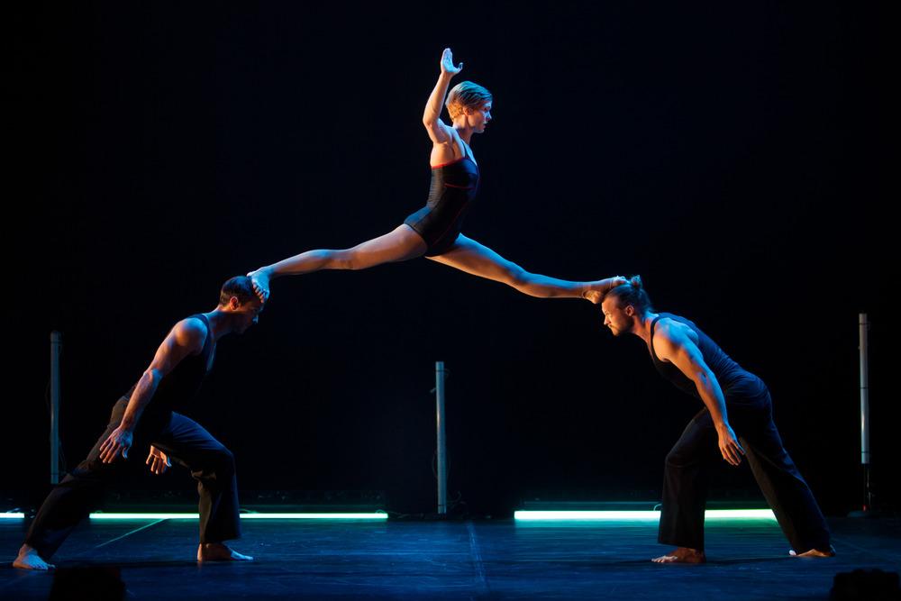 Circa Wunderkammer - Emma McGovern for Sydney Opera House