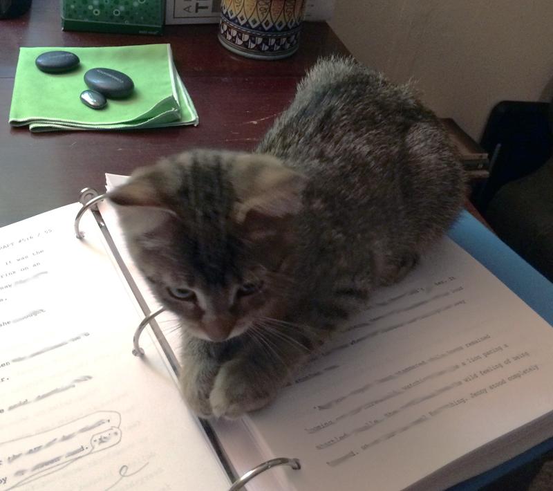 My editor.