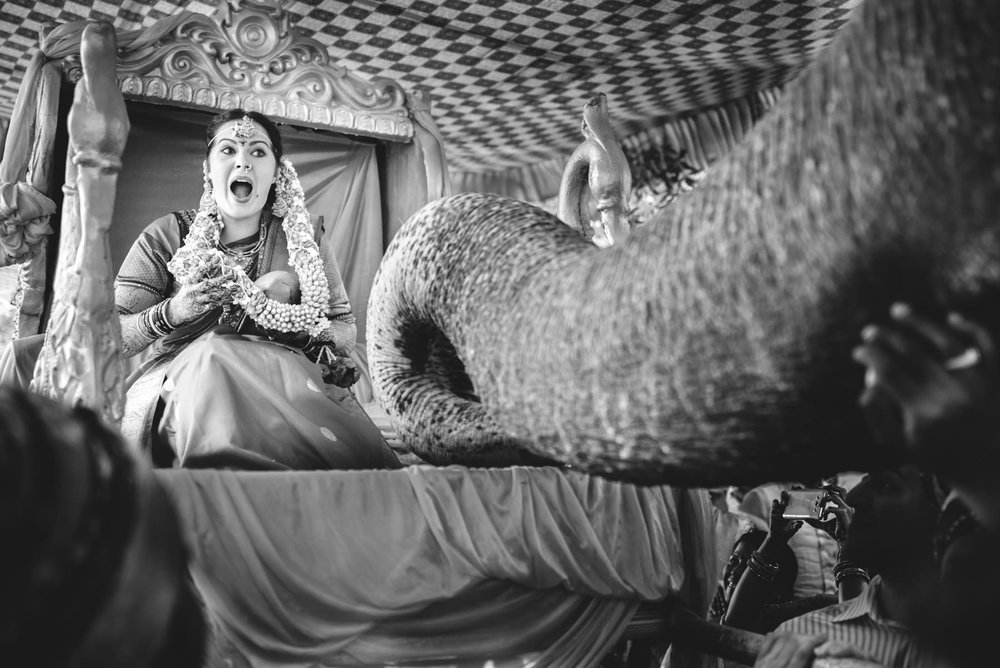 Traditional Telugu Wedding in Hyderabad
